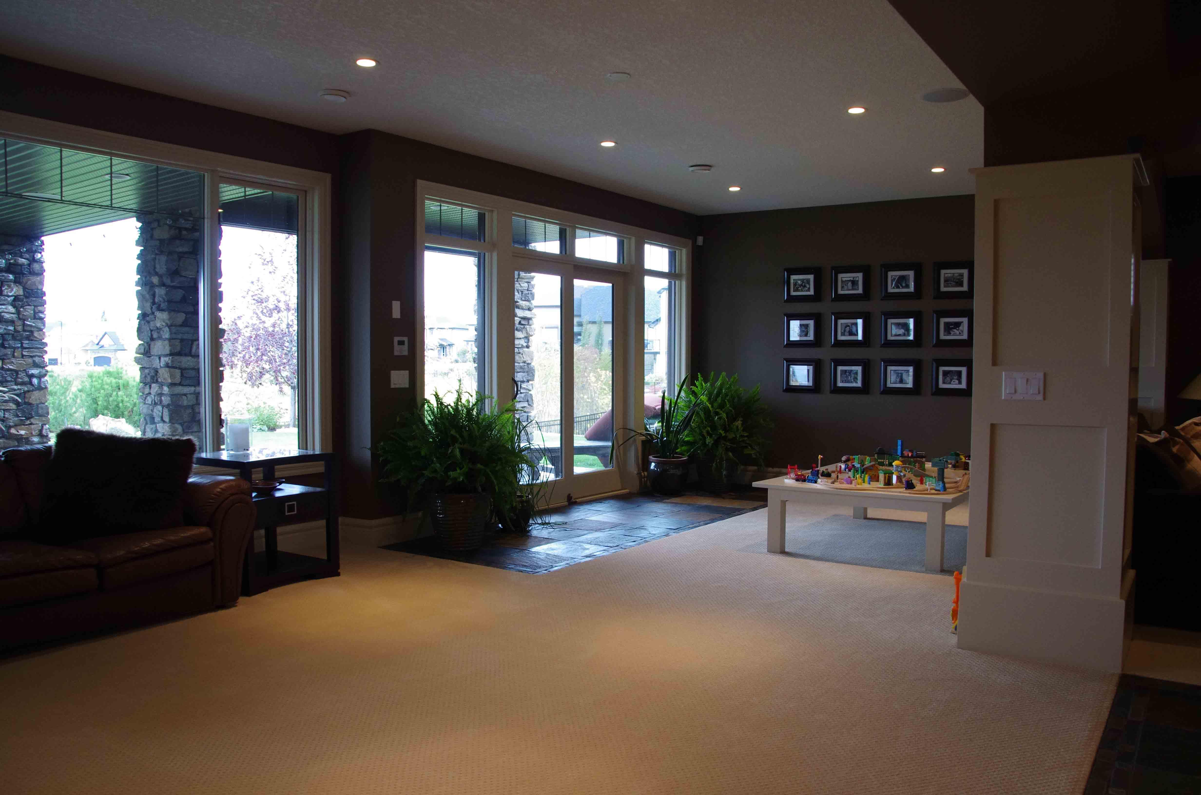 Living Room - Basement Development